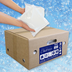 Protecta Chill Ice Packs 500g with Bubble 200mm x 150mm (20 per ctn)